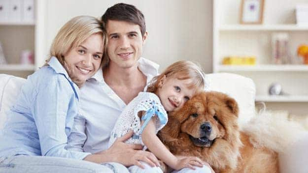 Wills & Trusts dog-young-family Direct Wills Great Barr